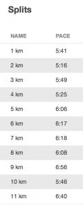 splits-kvarstmarathon